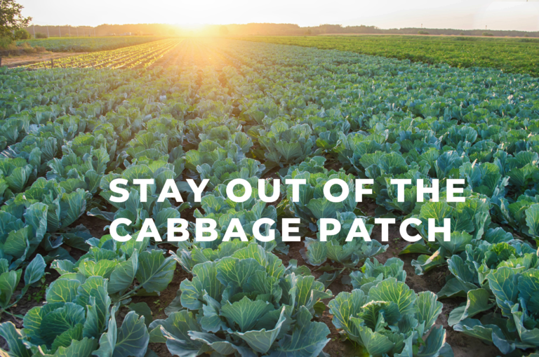 Stay Out Of The Cabbage Patch